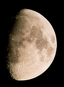 Gibbous Prints - Gibbous Moon In The Night Sky Print by Chris Madeley