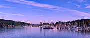 Gig Prints - Gig Harbor Bay Print by Dan Mihai