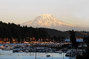 Snow Cap Photos - Gig Harbor by David Lee Thompson