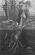 Giant Squid Framed Prints - Gigantic Squid And Ship, 19th Century Framed Print by Middle Temple Library