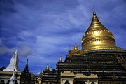 Medieval Temple Framed Prints - Gilded stupa of the Shwezigon Pagoda in Bagan Framed Print by Sami Sarkis
