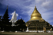 Medieval Temple Framed Prints - Gilded stupa of the Shwezigon Pagoda Framed Print by Sami Sarkis
