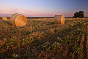 Hay Bales Originals - Gillespie County Sunrise 2 by Paul Huchton