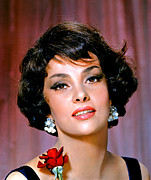 Lollobrigida Framed Prints - Gina Lollobrigida, Ca. 1960 Framed Print by Everett