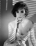 1960s Portraits Posters - Gina Lollobrigida, Ca. Early 1960s Poster by Everett