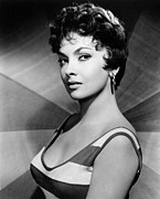 Striped Shirt Posters - Gina Lollobrigida, Ca. Late 1950s Poster by Everett