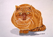 Irish Artists Painting Originals - Ginger Cat by Eamon Reilly