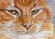 Collectible Mixed Media Prints - Ginger Cat  Print by Svetlana Ledneva-Schukina
