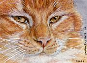Ginger Cat  Print by Svetlana Ledneva-Schukina