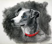 Cute Dogs Pastels - Ginger in Charcoal by Terri Mills