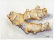 Root Originals - Ginger Still Life by Amanda Makepeace