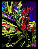 Ginger Flower Digital Art Posters - Ginger Poster by William R Clegg