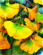 Yellows Drawings Prints - Ginko  Print by Pamir Thompson