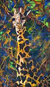 Contemporary Artist Framed Prints - Giraffe Framed Print by Kd Neeley