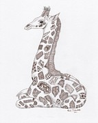 Sepia Ink Drawings Framed Prints - Giraffe Framed Print by Paula Dickerhoff