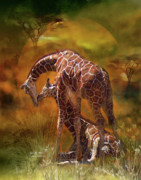 African Art Posters - Giraffe World Poster by Carol Cavalaris