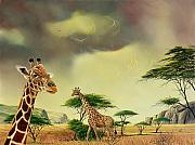 Don Griffiths - Giraffes at Thabazimba