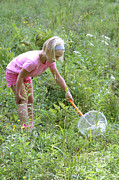 Netting Posters - Girl Collects Insects In A Meadow Poster by Ted Kinsman
