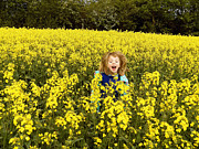 Pat  J Falvey - Girl in field of Yellow