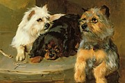 Indoors Painting Framed Prints - Give a Poor Dog a Bone Framed Print by George Wiliam Horlor