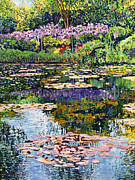 Wisteria Framed Prints - Giverny Reflections Framed Print by David Lloyd Glover