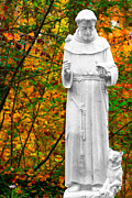 St. Francis Of Assisi Photos - Giving by Mitch Cat