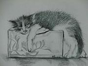 Cute Kitten Originals - Gizmo by Sandra Valentini