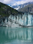 Inside Passage Prints - Glacier Bay Majesty Print by Sandra Bronstein