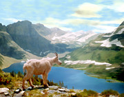 Goat Digital Art Metal Prints - Glacier National Park Metal Print by Kurt Van Wagner