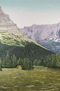Park Scene Paintings - Glacier National Park Montana by Mary Ann King