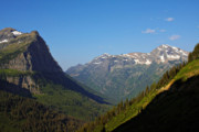 Valleys Posters - Glacier National Park MT - View from Going to the Sun Road Poster by Christine Till