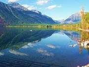 Deahn      Benware - Glacier Park Magic
