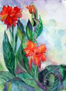 Gladiola Drawings - Glad to be by Mindy Newman
