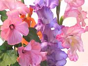 Purple Gladiolas Posters - Gladiola Bouquet Poster by Kathie McCurdy