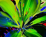 Diane Berry Paintings - Glas by Diane E Berry