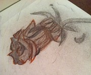 Glass Drawings - Glass Rose by Courtney Gainey