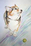 Corgi Dog Portrait Posters - Glen Cohen Poster by Karen  Peterson