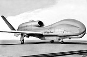 Global Drawings - Global Hawk by Lyle Brown
