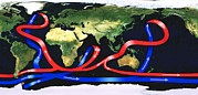 Conveyor Belt Framed Prints - Global Ocean Circulation Framed Print by
