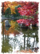 Pond Greeting Cards Digital Art - Glorious Fall Colors Reflection with Border by Carol Groenen