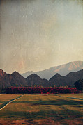 Glorious Light Print by Laurie Search