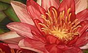 Botanical Pastels Originals - Glorious by Melissa Tobia