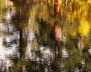 Cottonwood Digital Art - Glorious Reflections 2 by Terril Heilman