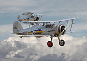 Biplane Framed Prints - Gloster Gladiator Framed Print by Pat Speirs