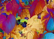 Colorful Photography Sculpture Prints - Glowing Print by Erica Hanel