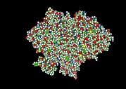 Glycogen Phosphorylase, Molecular Model Print by Francis Leroy, Biocosmos
