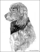 Drawings Of Dogs Prints - Go Aggies Print by Jack Pumphrey