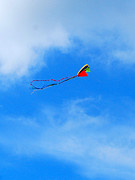 Ribbons Print Prints - Go Fly A Kite GFAKP Print by Jim Brage
