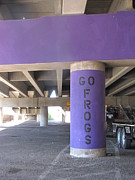 Fort Worth Originals - Go Frogs by Shawn Hughes
