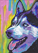 Siberian Husky Paintings - Go Husky by Lea